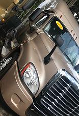 2016 Gold Freightliner Pic1.jpg