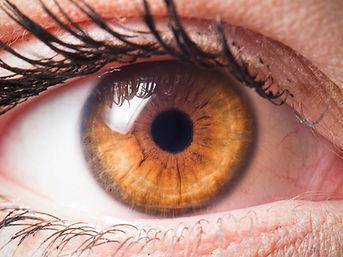 Human eye close-up detail.jpg