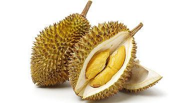 durianfruit1143494919.jpg
