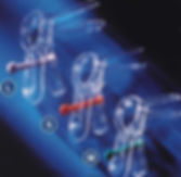 Зеркало по Куско одноразовое стерильное Диаклон