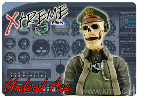 """Pilot Bust  - 1/6th Scale  WWII """"UNDEAD ACE"""""""