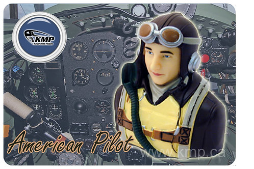 Pilot Bust  - 1/5th scale  WWII American Pilot