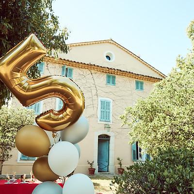 Platon's Birthday Party