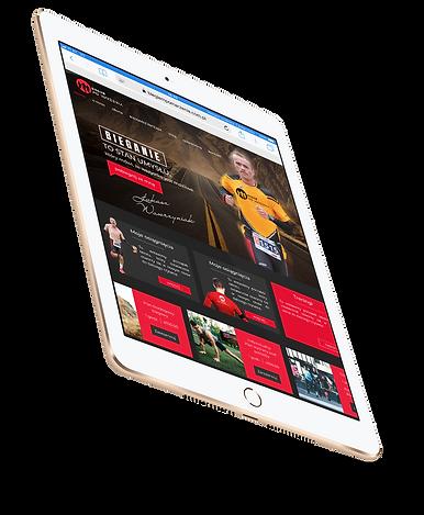 iPad Air 2 Gold.png