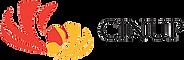 cinup logo.png
