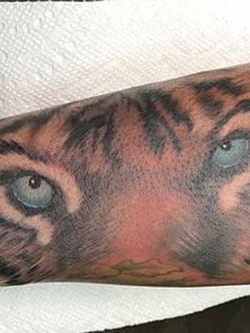 Realistic Tiger Eyes