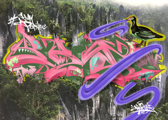 グヌンムル国立公園 in Malaysia