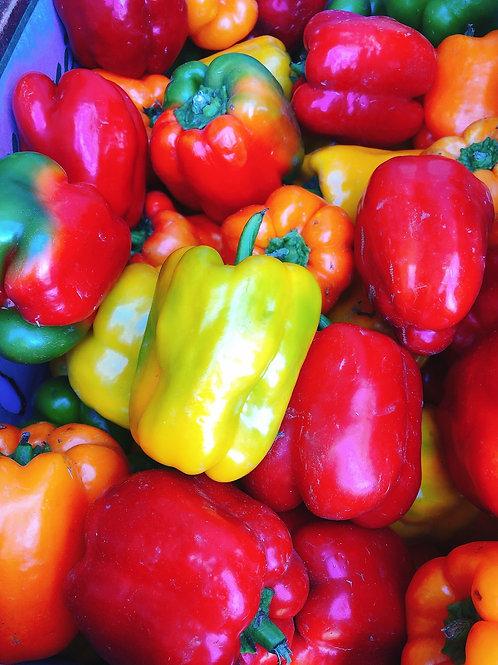 Sweet Bell Peppers 紅綠燈彩椒