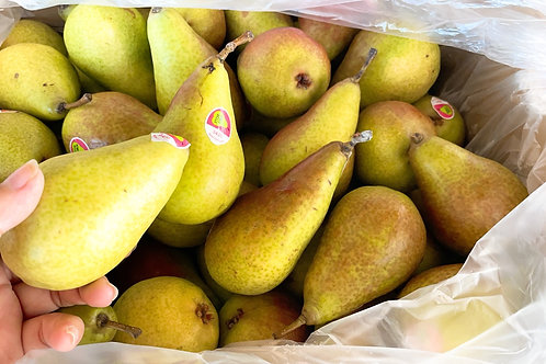 Honey Belle Pear NZ 紐西蘭梨子
