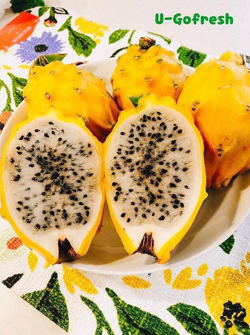 Yellow Dragon Fruit 麒麟果