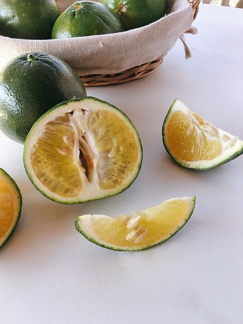 Cocktail Grapefruit 加州蜜柚