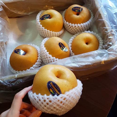 秋月梨 (中國)