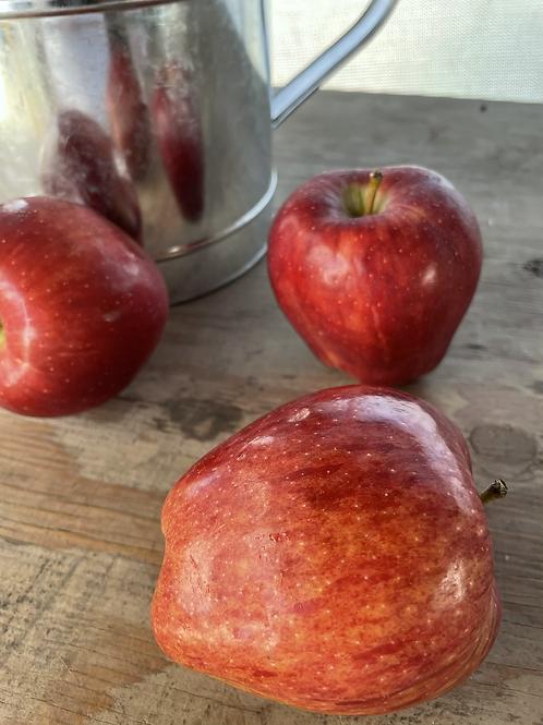 Red Apple 白雪公主紅蘋果一份7顆
