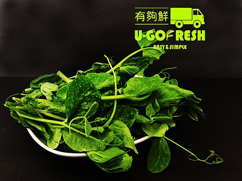 Natural-Pea Sprout大豆苗