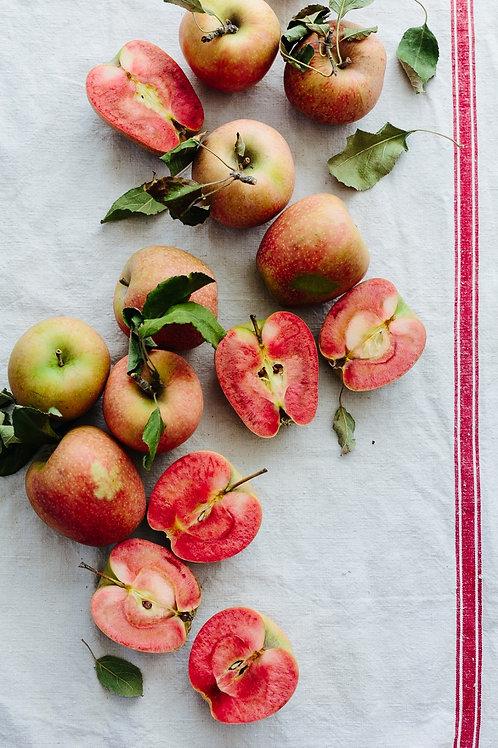 Hidden Rose Apple 聖誕蘋果