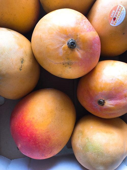 Australia Mango 澳洲空運芒果 3顆