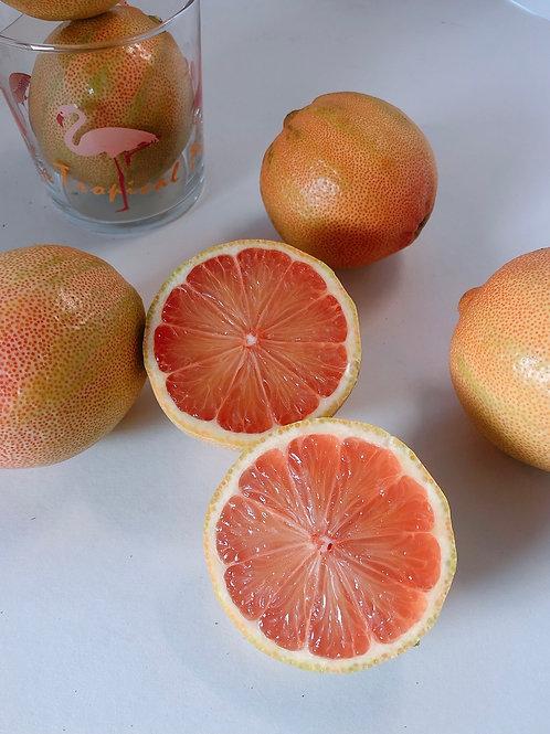 Pink Lemon 粉紅色檸檬