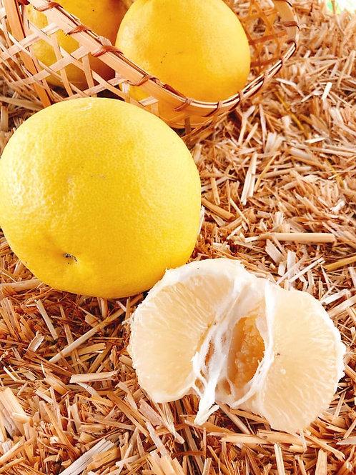 Oroblanco 無農藥柚子農場的白金柚