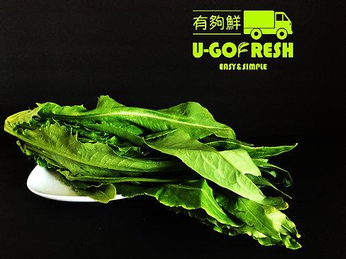 A Choy A菜