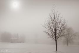 Frozen Sky, Eden Farm