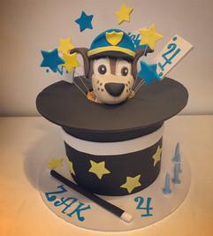 Paw Patrol and Magic Cake