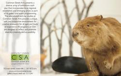 CSA Ad for Magazine 2