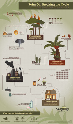 SAUCIERJ_infographicflat