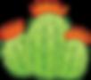 sm barrel cactus.png