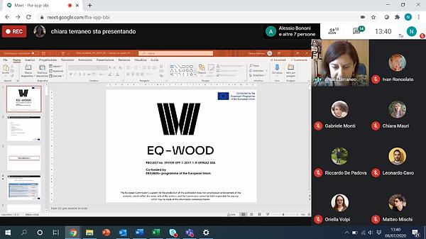 eq-wood_zoom.png