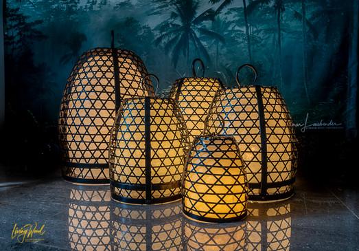 Design Chicken Cage