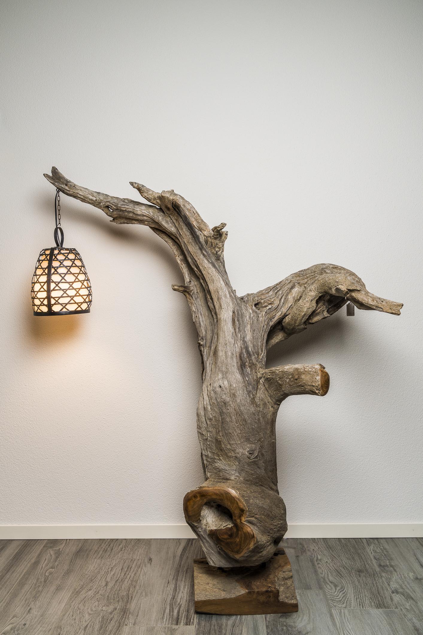 Teakwurzel als Lampe