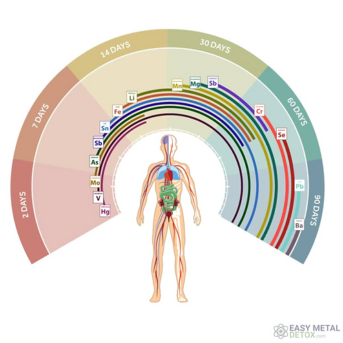 Advanced HeavyMetal Detox * Healing Within