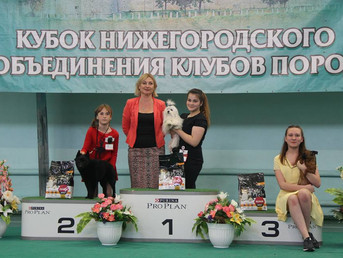 12.06.17 Н.Новгород