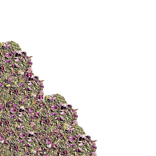 herbs8.jpg