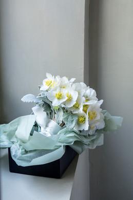 Bouquet d'hellebores