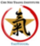 CNTI TT Logo top bottom Sept 2019.jpg