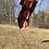Thumbnail: Moomoo