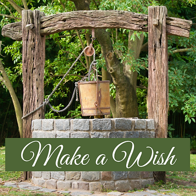 Wishing Well.png