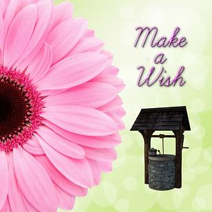 Wishing Well.png