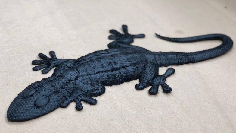 Sample Lizard