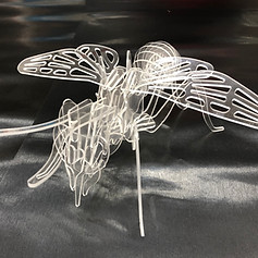 Sample Fly