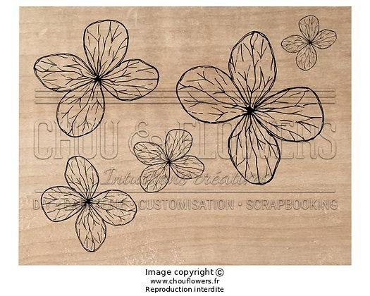 Bois fleurs légères