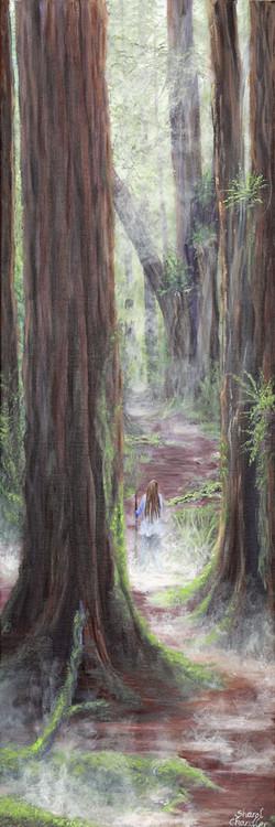 Mystic Redwoods