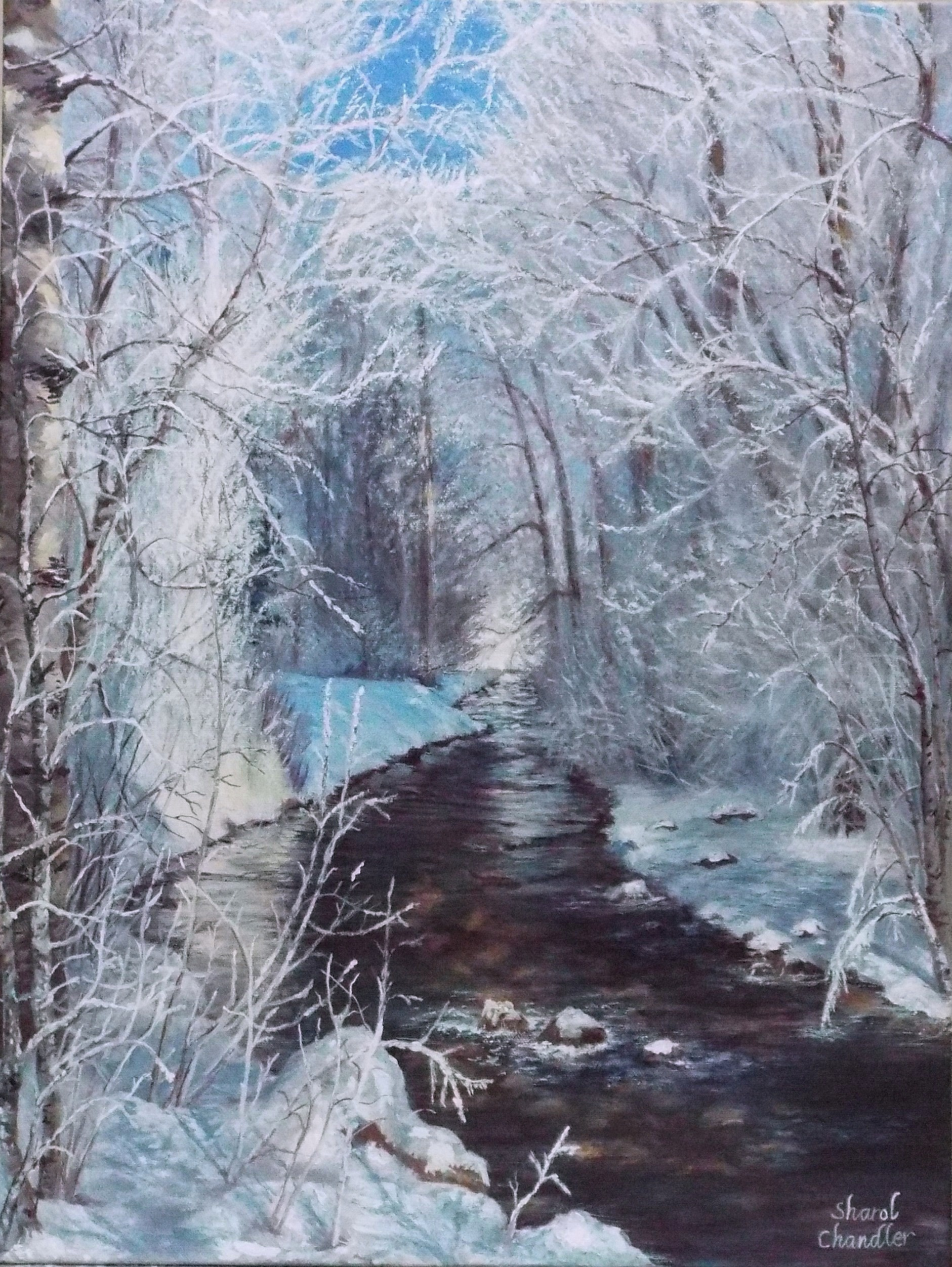 Winter by the Creek