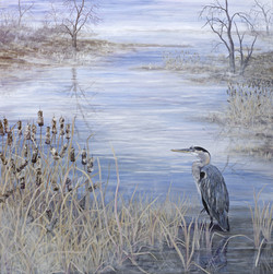 Colors of the Heron