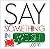 Say Something in Welsh.jfif