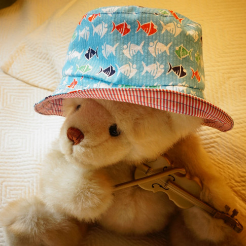 Fishy Hat