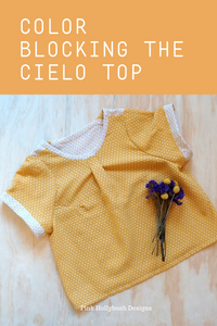 Colorblocking the Cielo Top