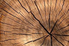 lumber-84678_1280.jpg