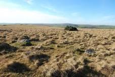 March 2011 - Bodmin Moor